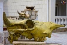 Ларариум. Жертвенные черепа (Древне-греческие выездные регистрации брака)